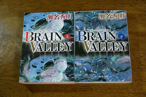 BRAIN VALLEY